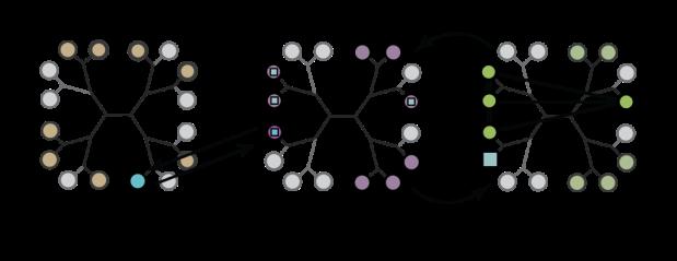circle-groups-GET